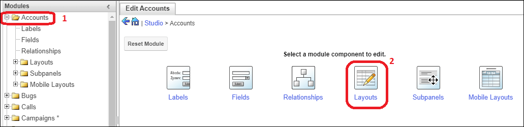 Screenshot of setup layouts for Accounts module
